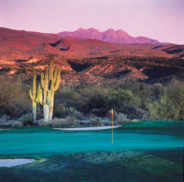 Golf hole with pink mountains and giant Saguaro
