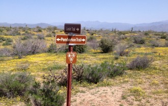Lariat trail meets up with the Pemberton trail in McDowell mountain park.