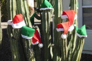 Merry Arizona Christmas